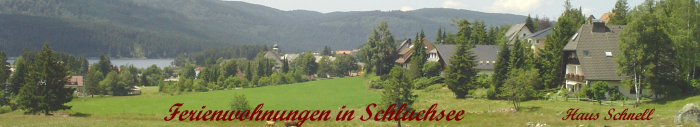 http://www.schluchsee.org/haus_schnell_700.png